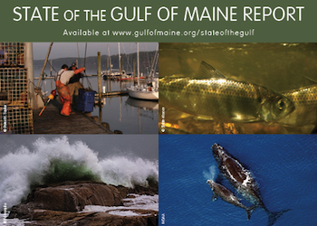 State of the Gulf of Maine Report