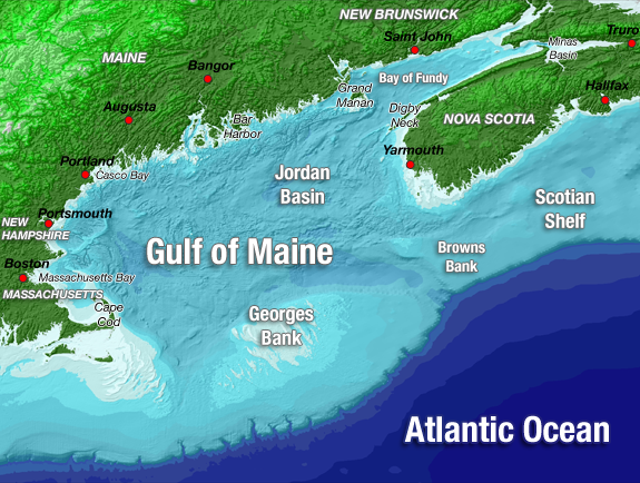 The Gulf of Maine | Gulf of Maine Council on the Marine Environment