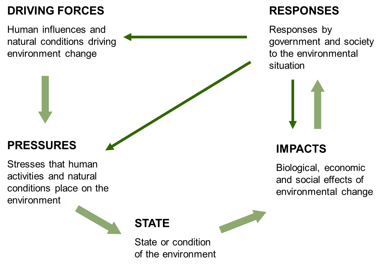 dpsir framework ecosystem indicator partnership gulf of maine dpsir diagram