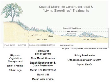 coastal-shoreline-continuum