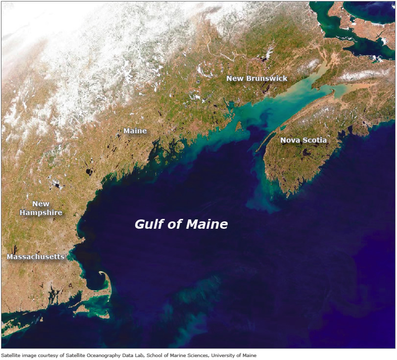 The need for conservation laws how technological for Maine fishing laws 2017