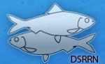 dsrrn-logo.png
