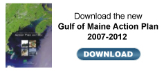 Gulf of Maine Action Plan